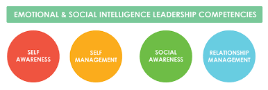 Competencies Meaning Emotional And Social Intelligence Leadership Competencies An Overview