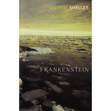 short essay questions for frankenstein frankenstein shmoopcom