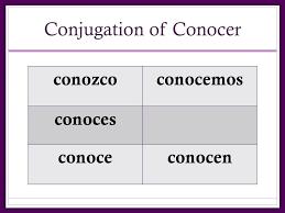 55 Specific Conocer Conjugation