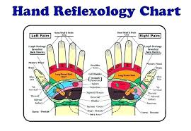 Muscle Chart Template Enchanting Reflexology Printable Hand Foot Charts Map Chart Template Definition