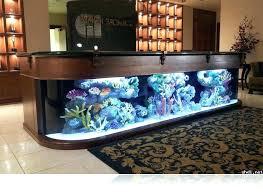 aquarium for office. Office Desk Aquarium Fish For
