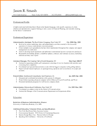 Gallery Of Professional Cv Template Word Document Resume Document
