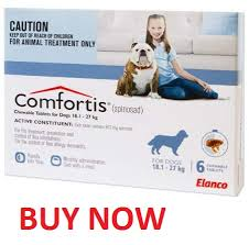 comfortis for dogs. Delighful Comfortis Comfortis Blue 4060lbs Flea Treatments For Dogs For Dogs