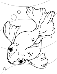 Small Picture Goldfish Coloring Page Handipoints