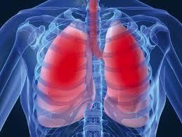 Imagini pentru capacitate pulmonara