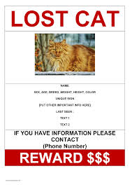 Lost Cat Flyer 012 Missing Pet Poster Template Word Ideas Reward Striking