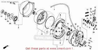 honda trx300 fourtrax 300 1991 (m) usa rear brake panel 1991 Honda Fourtrax 300 Wiring Diagram rear brake panel schematic 1991 honda fourtrax 300 wiring diagram