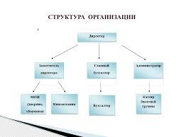 Учет и анализ нематериальных активов презентация онлайн  СТРУКТУРА ОРГАНИЗАЦИИ
