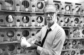 short essay on skinner s operant conditioning theory the pigeons of ed tech