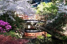 japanese garden descanso gardens guild