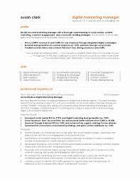 Digital Marketing Contract Template Elegant Sports Marketing Resume