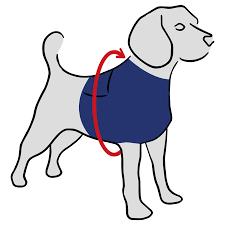 MPS-TOP SHIRT 4-IN-1 DOG - Medical Pet Shirts