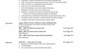 Real Estate Broker Resume Online Copywriter Sample Resume