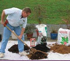 blueberry soil mix. Wonderful Mix Step 1 Soil Mix Throughout Blueberry Mix Dave Wilson Nursery