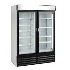 Stand Up Display Freezer Stainless Steel Upright Display Freezer Rs 100 piece Krishna 70