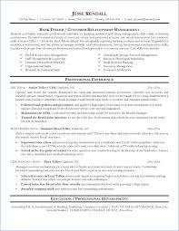 Resume For Bank Teller Best Of Banking Resume Sample Atopetioa Com
