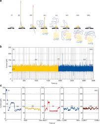 The Oxford Nanopore Minion Delivery Of Nanopore Sequencing