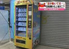 Ping Pong Vending Machine Gorgeous The Most Unusual Vending Machines Others