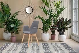 Stuhl Stühle Bequem Armlehne Holz Retro Modern Design Grau 2er Set