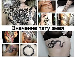 значение тату змея информация о рисунке и фото примеры готовых