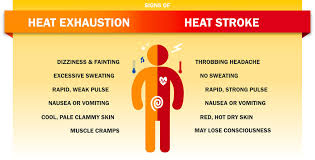 Heat Exhaustion Heat Stroke Chart Staying Safe Avoiding A Medical Crisis During The