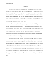 essay about traveling experience to new york 4