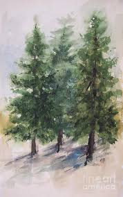 fir trees painting three fir trees by anthony coulson