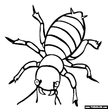 Small Picture Coloring Pages Insects Page Pdf Pre K For Kids Printable Maxvision