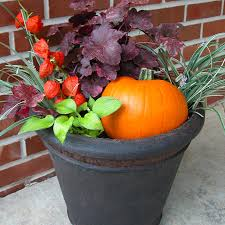 Fall Flower Pot Ideas 85 Inspiring Style For Images About Container Garden Ideas For Fall