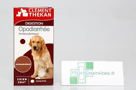 diabete chez le chien comprimés