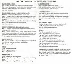 Dog Dna Chart Dogs Dna Color Chart