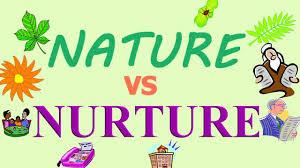 gender differences nature or nurture essay dissertation  gender differences nature or nurture essay