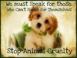 speak for those out a voice stop animal cruelty by deeya n  deeya nagi