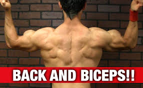 back and biceps workout yt
