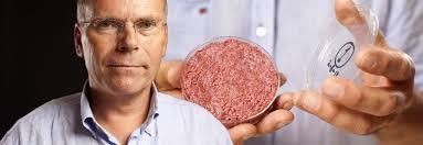 Image result for in vitro meat