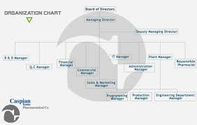 Pharmaceutical Company Organizational Chart Organization Chart Caspian Tamin Pharmaceutical Company