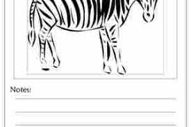 Small Picture Zebra Print Outline Kids Coloring Pages Printable Coloring Pages