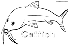 Small Picture Catfish coloring pages Coloring pages to download and print