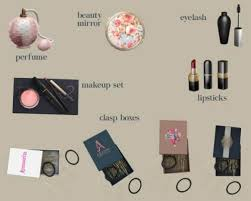 leo sims makeup clutter for the 4