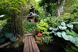 Small Picture Czarne bambusowe paprocie i hostas w tym tropikalnym