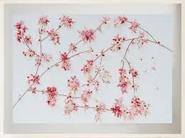 oriental erfly cherry blossom wall