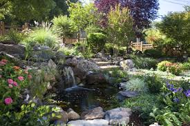 Small Picture 18 Garden Pond Designs Ideas Design Trends Premium PSD