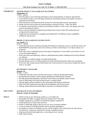 Iot Sample Resume Product Manager IoT Resume Samples Velvet Jobs 1