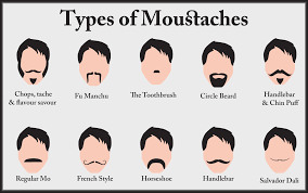 Mustache Styles Chart Mustach Types Chart Google Search Types Of Mustaches