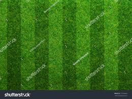 green grass soccer field. Green Grass Soccer Field Background