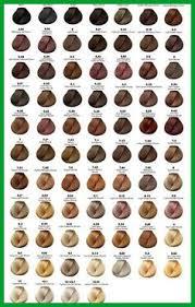 L Oreal Professionnel Colour Chart 17 Systematic Loreal Inoa Supreme Color Chart