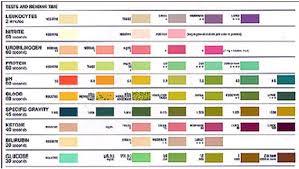 Urine Stick Colour Chart Urine Stick Chart Bedowntowndaytona Com
