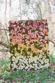 Flower Wall Flower Wall Floral Wall Flower Wall Melbourne Flower Wall Hire