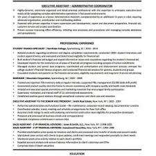 Executive Resume Writer New Brilliant Ideas Executive Resume Writer