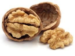 Image result for अखरोट (Walnut)